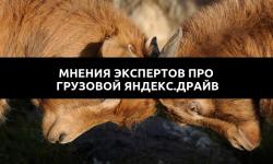 Что говорят о грузовом каршеринге от Яндекс.Драйва