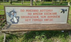 В Воронеже появится каршеринг